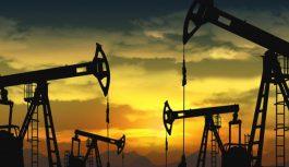 La producción de Geopark en Latinoamérica creció 24%