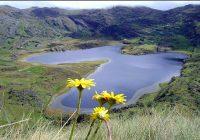 ANA: Definición de cabeceras de cuenca se emitirá en junio