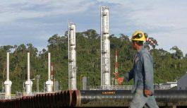 Perú-Petro relanzará proyecto Sheshea