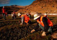 Minería: S/ 1,680 millones se destinaron a fondos sociales en beneficio de comunidades