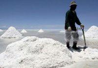 Perú: Plateau Energy anuncia descubrimiento de nueva área rica en litio