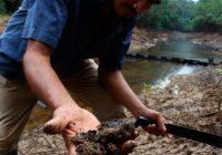 Los desafíos ambientales para Perú en el 2020