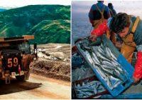 Minsa ya aprobó protocolo sanitario para pesaca y minería