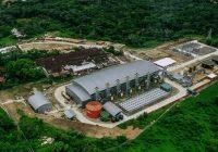 Petrotal anuncia paralización de sus operaciones en lote 95 en Loreto