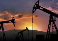 SNMPE: regalías hidrocarburíferas se desploman -48% entre enero a julio 2020