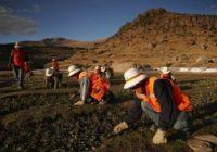 Adelanto de canon minero: Apurímac recibirá S/ 62.2 millones adicionales